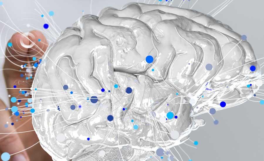 Illustration for brain metabolomics