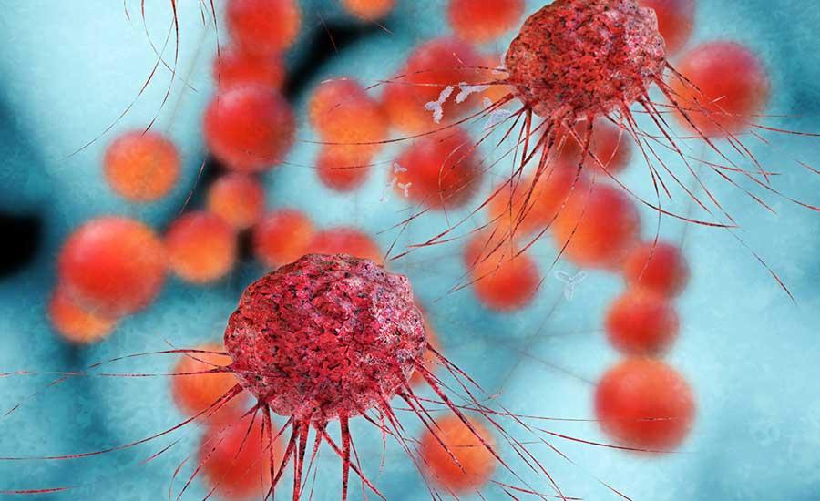 Cancer-cells-Sept-10-2019