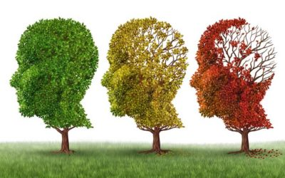 Microbiome and cognition in Alzheimer´s disease