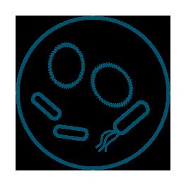 Functional-Microbiomics_Mikroben